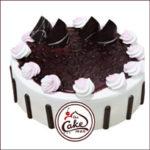 Blueberry-Cake-300×300